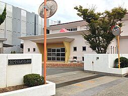 小学校泉佐野市...