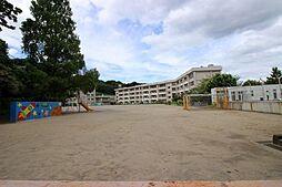 小学校鷹取小学...