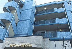 セザール 桜通り上福岡