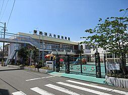 七宝幼稚園