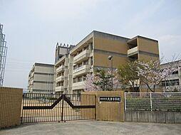 大津中学校