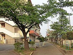 緑ヶ丘小学校 ...
