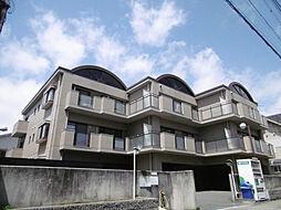 レジデンス甲子園[3階]の外観