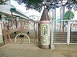 すわ幼稚園 (...