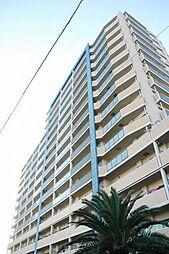 レーベンハイム湘南辻堂 13階