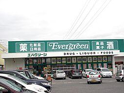 エバグリーン神...