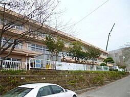 水木小学校(6...