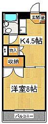 ハイネス菅谷[203号室]の間取り