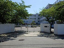 柳川中学校