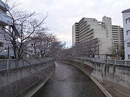 神田川 50m