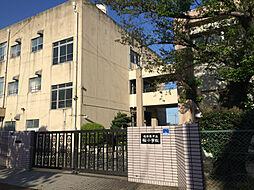 桜小学校 約4...