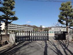 甲山中学校 1...