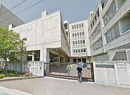 堺市立新湊小学...