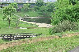 公園 約726...