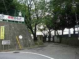 桜木小学校