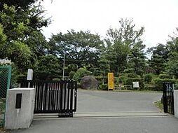 葵中学校 徒歩...