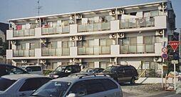 埼玉県さいたま市桜区大字白鍬の賃貸マンションの外観