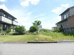 富山市城村