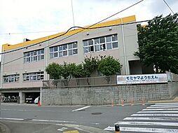 モミヤマ幼稚園...