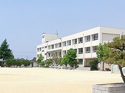 蓮池小学校…約...