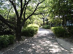 杁ケ池公園まで...