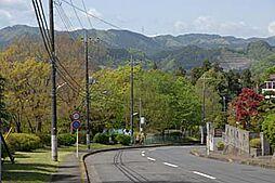 車道と山並み、...