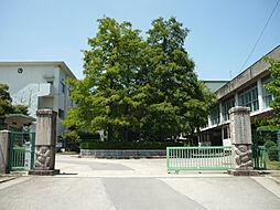 竜美丘小学校 ...