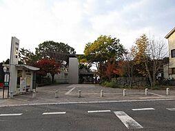 駅京阪坂本駅ま...