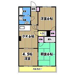 東京都羽村市五ノ神2丁目の賃貸マンションの間取り
