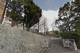 頌栄幼稚園(743m)