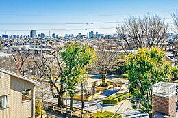屋上テラスから野沢公園を見た様子です。反対方向には富士山を見ることができます。