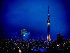 (住戸からの眺望写真)地震の揺れを軽減する制震タワーマンション。21階角住戸でリビングは2面採光。スカイツリーと隅田川の花火が見られます。高層階からの夜景は格別ですね。