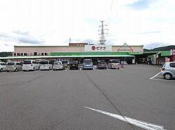 ピアゴ川辺店