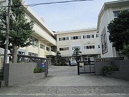 中学校亀川中学...