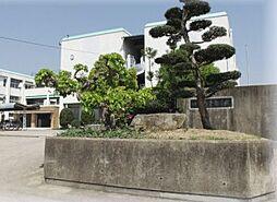 中学校亀岡市立...