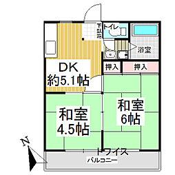 埼玉県飯能市大字岩沢の賃貸アパートの間取り