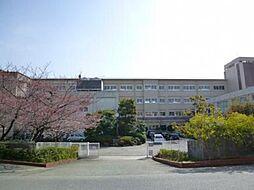 宝塚中学校です