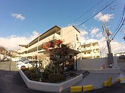 サンハイツ北豊島[2階]の外観