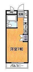 千葉県松戸市紙敷の賃貸マンションの間取り