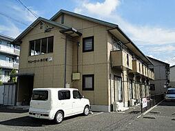 サニーコート井川城[2階]の外観
