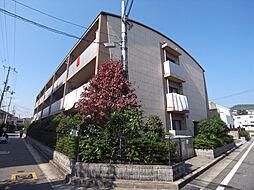 プロシードカイト[1階]の外観