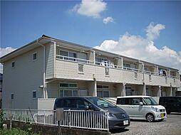 [テラスハウス] 千葉県船橋市咲が丘1丁目 の賃貸【/】の外観