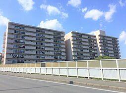 中古マ/横浜鶴ヶ峰ビューハイツ