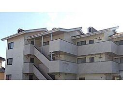 山梨県甲斐市竜王の賃貸マンションの外観