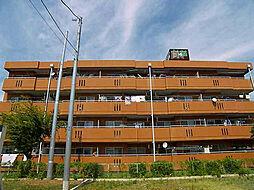 ロッキーホーム成田