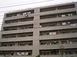 川口青木住宅
