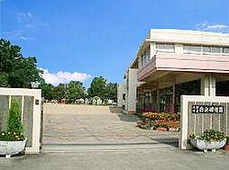 白浜幼稚園 1...