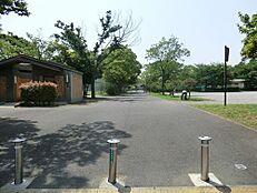 東綾瀬公園 240m