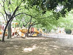 西ノ原中央公園...