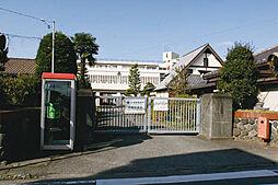 文命中学校